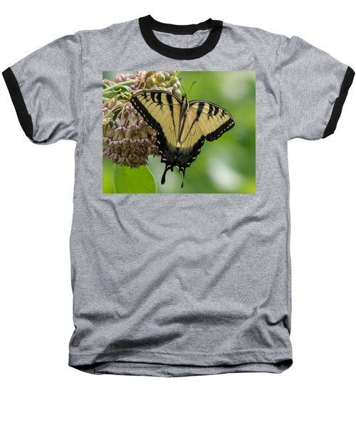 Yellow Swallowtail Butterfly Baseball T-Shirt