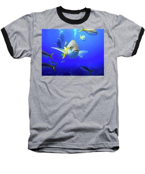 Yellowtails Baseball T-Shirt