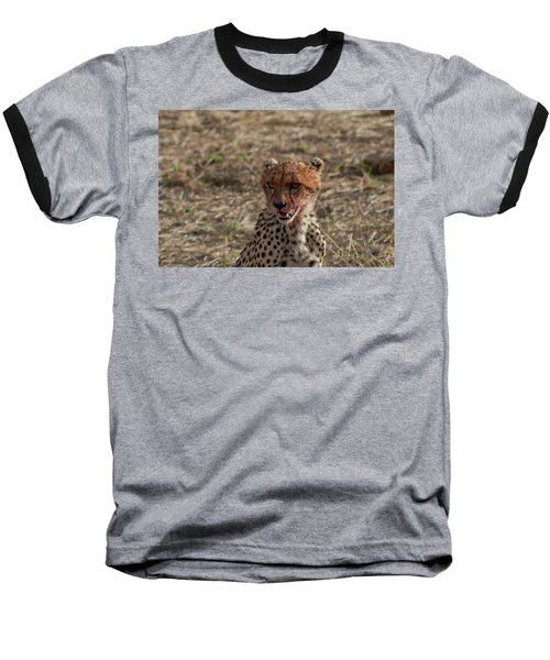 Young Cheetah Baseball T-Shirt