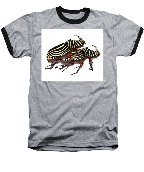 Zebra Pattern Rhinoceros Beetle 2 Baseball T-Shirt