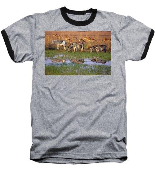 Zebras In Botswana Baseball T-Shirt