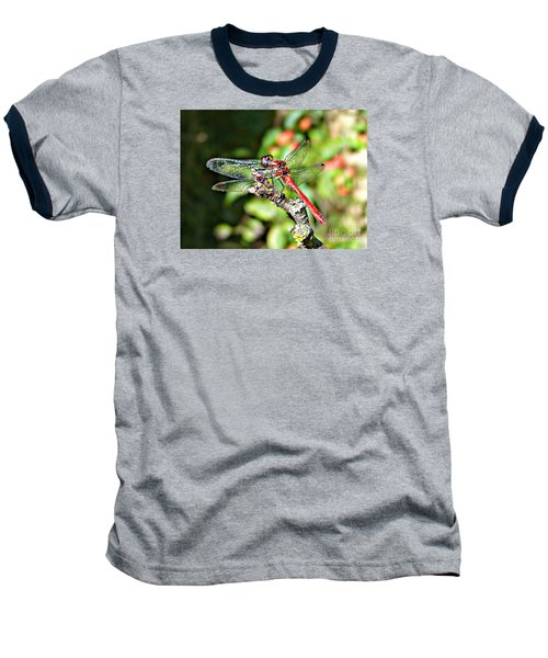 Baseball T-Shirt featuring the photograph Little Dragonfly by Morag Bates