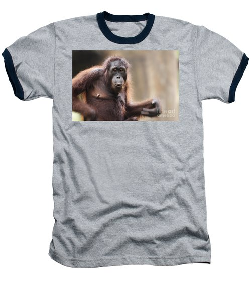 Orangutan Baseball T-Shirt by Richard Garvey-Williams