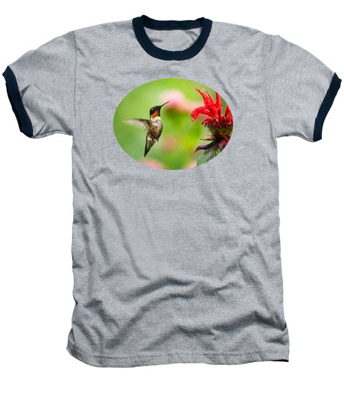 Male Ruby-throated Hummingbird Hovering Near Flowers Baseball T-Shirt by Christina Rollo