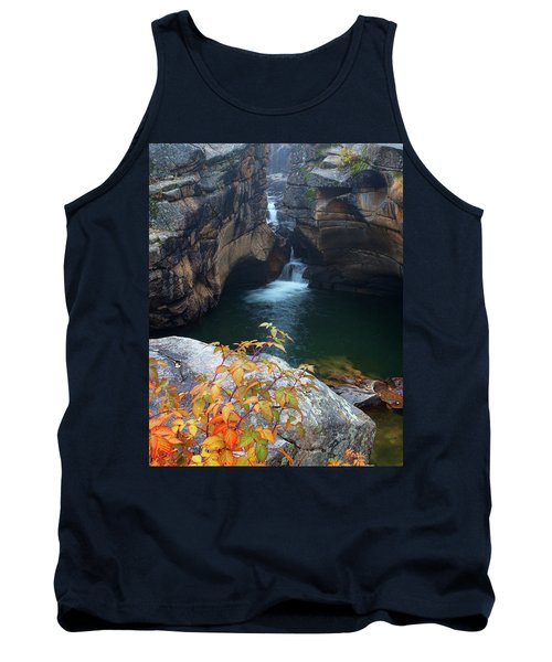 Autumn At The Grotto Tank Top