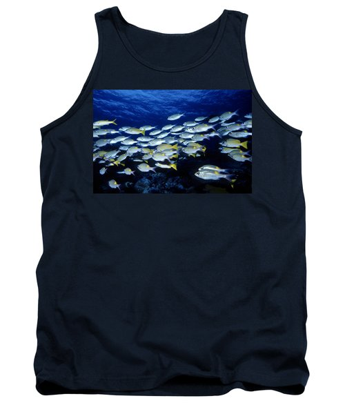 Bluelined Snappers And Yellowspot Emperors Tank Top