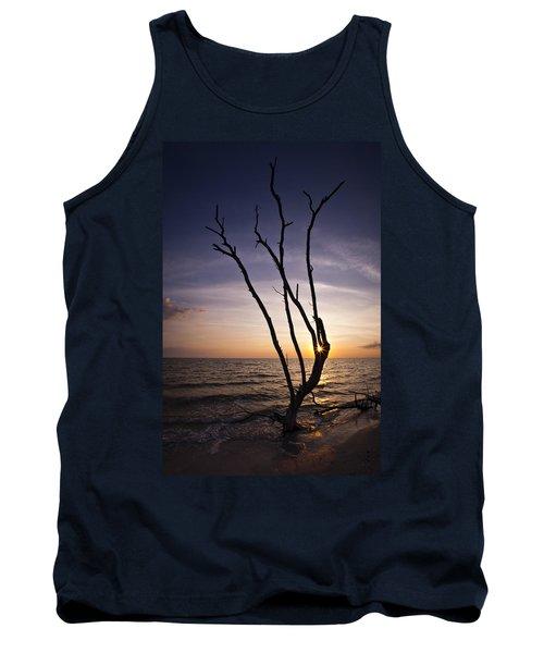 Bonita Beach Tree Tank Top by Bradley R Youngberg