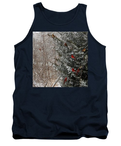 Cardinals In Winter 1 Square Tank Top