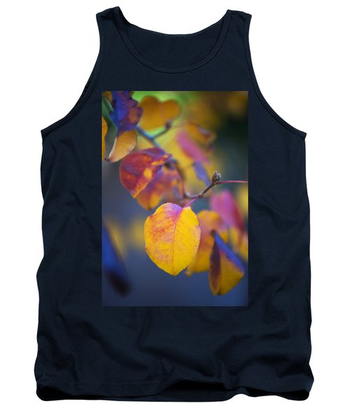 Fall Color Tank Top by Stephen Anderson