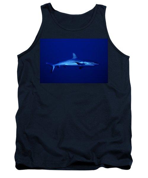 Gray Reef Shark Tank Top
