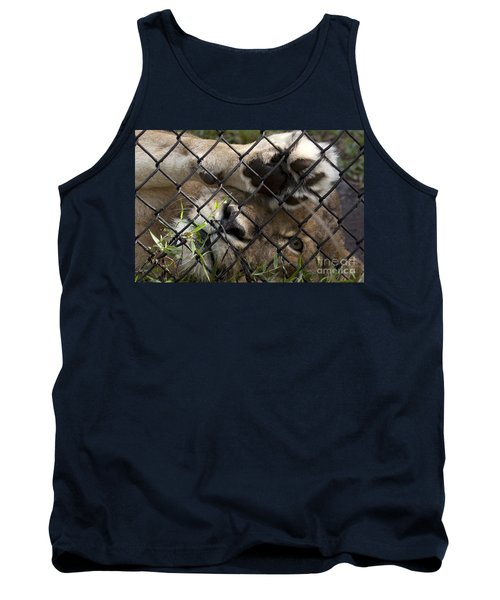 I Want To Go Home - Female African Lion Tank Top
