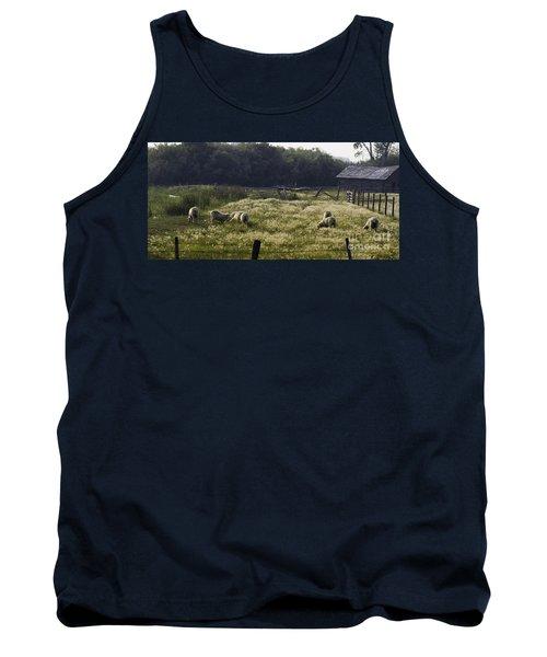 Montana Graze Tank Top