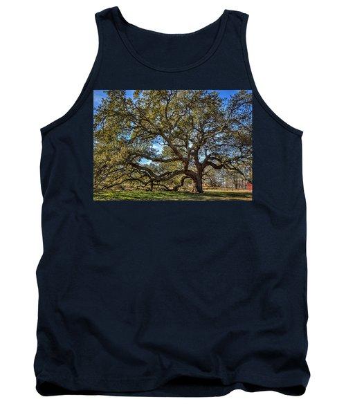 The Emancipation Oak Tree At Hu Tank Top