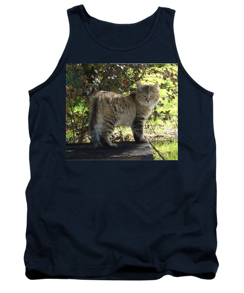 Timber The Kitten Tank Top