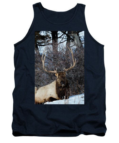 Wyoming Elk Tank Top