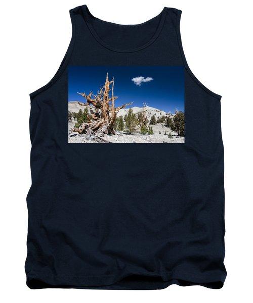 Bristlecone Pine - Pinus Longaeva Tank Top