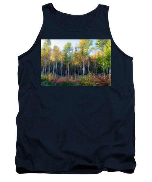 Birch Trees Turn To Gold Tank Top
