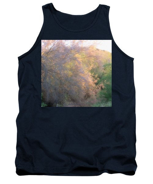 Desert Ironwood Blooming In The Golden Hour Tank Top