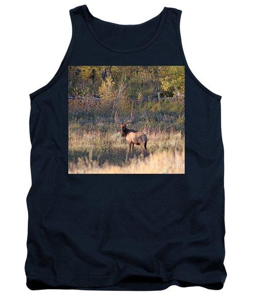 Fall Sunset Satellite Bull Elk Tank Top