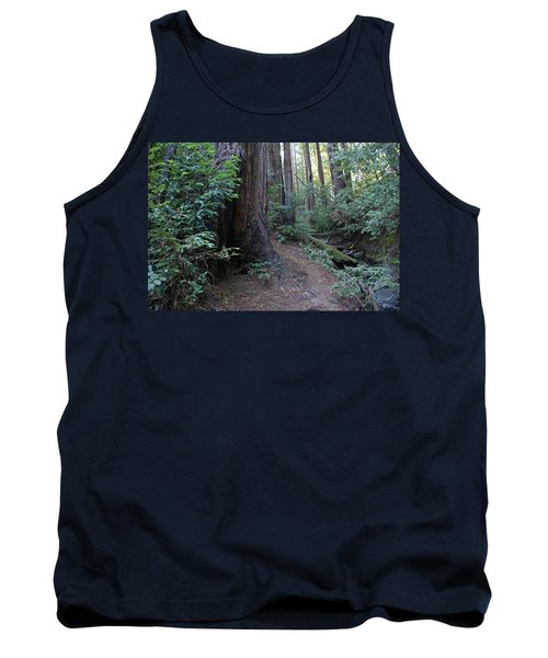 Magical Path Through The Redwoods On Mount Tamalpais Tank Top
