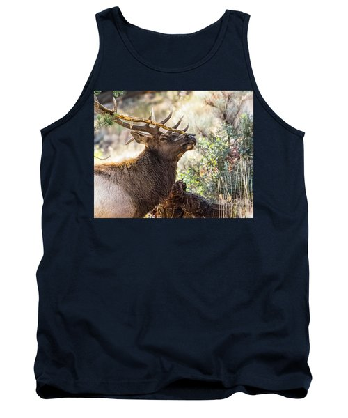 Tank Top featuring the photograph Ready For Rut by Yeates Photography