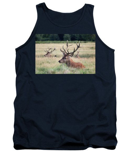 Richmond Park Stags Tank Top