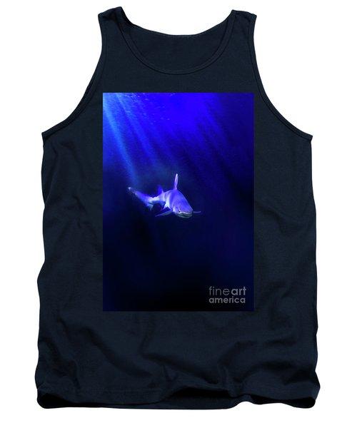 Shark Tank Top by Jill Battaglia