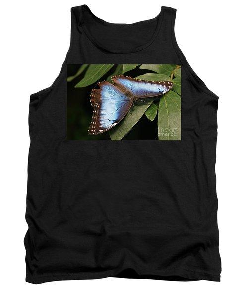 Blue Morpho Butterfly Tank Top