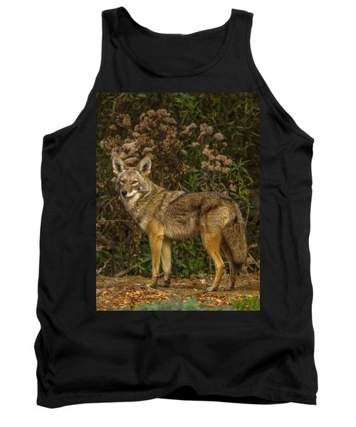 The Coyote Tank Top