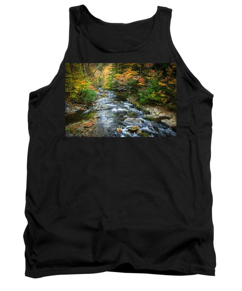 Stream Great Smoky Mountains Painted Tank Top