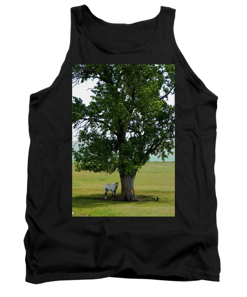 A One Horse Tree And Its Horse					 Tank Top