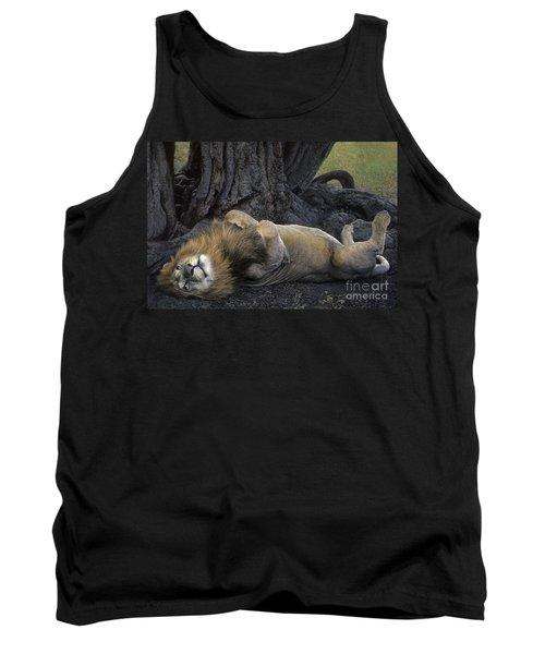African Lion Panthera Leo Wild Kenya Tank Top