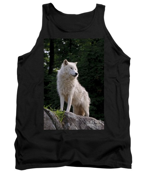 Arctic Wolf On Hill Tank Top