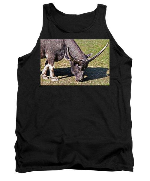 Asian Water Buffalo  Tank Top