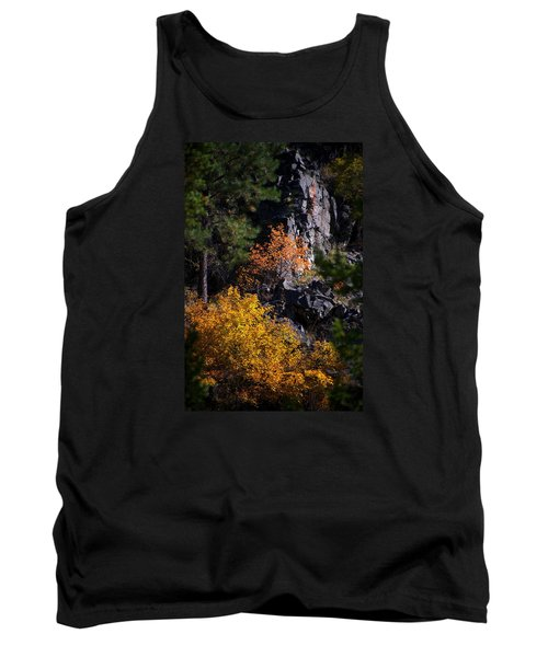 Tank Top featuring the photograph Autumn Colors 2 by Newel Hunter
