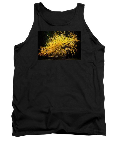 Tank Top featuring the photograph Autumn Colors 4 by Newel Hunter