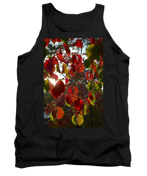 Autumn Dogwood In Evening Light Tank Top by Michele Myers