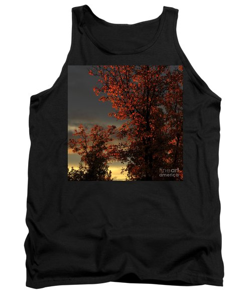 Autumn's First Light Tank Top by James Eddy