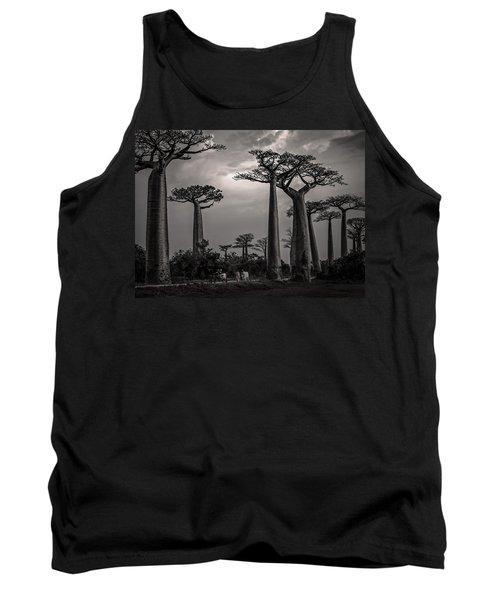 Baobab Highway Tank Top