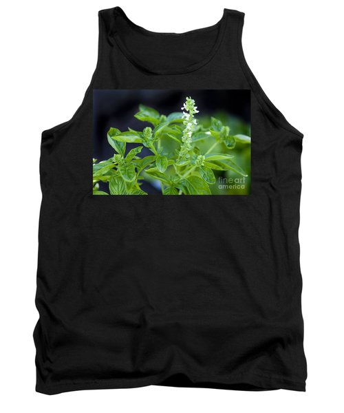 Tank Top featuring the photograph Basil With White Flowers Ready For Culinary Use by David Millenheft