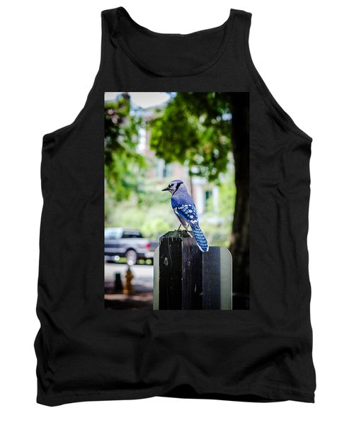 Tank Top featuring the photograph Blue Jay by Sennie Pierson
