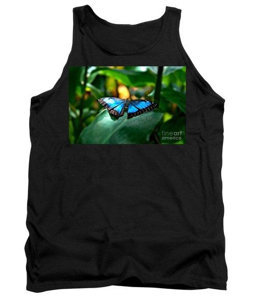Blue Lit Butterfly Tank Top