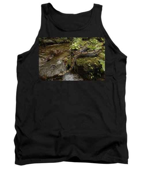Boa Constrictor Crossing Stream Tank Top by Pete Oxford