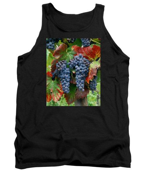 5b6374-cabernet Sauvignon Grapes At Harvest Tank Top