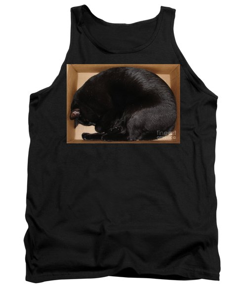 Tank Top featuring the photograph Cat In The Box by Kerri Mortenson