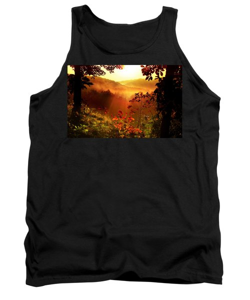 Cathedral Of Light Tank Top