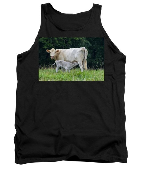 Charolais Cattle Nursing Young Tank Top by Chris Flees