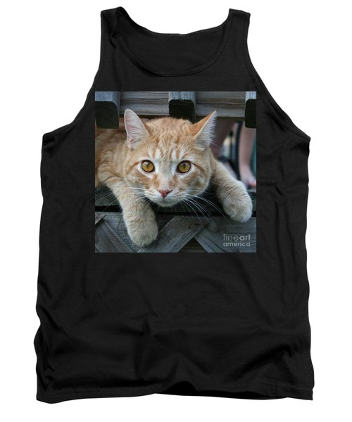 Cool Cat Named Calvin Tank Top