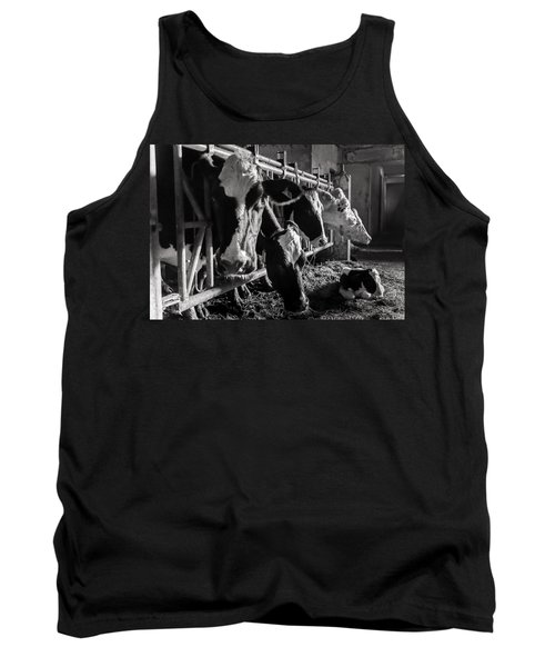 Cows In The Barn2 Tank Top