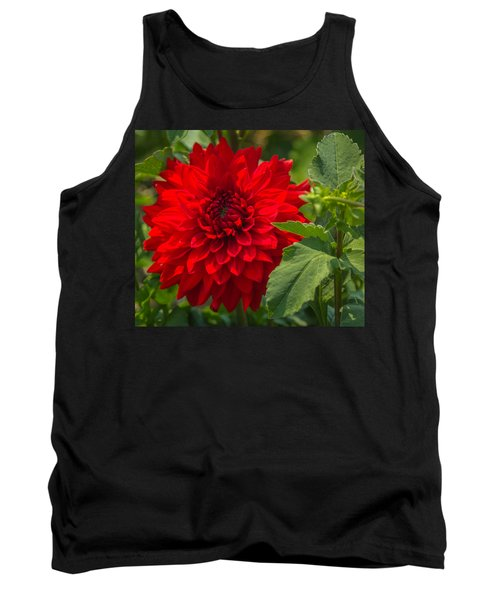 Dahlia Perfection Tank Top by Jane Luxton